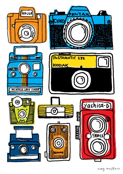 amywalters-cameras